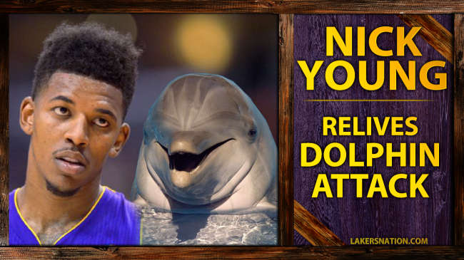 Lakers-Nick-Young-Attacked-By-Dolphins-SLATE